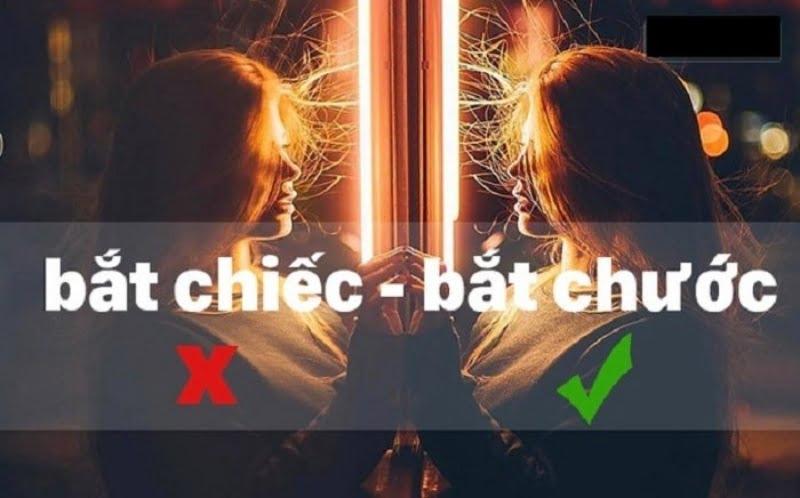 20-loi-chinh-ta-kinh-dien-nguoi-viet-hay-mac-phai6